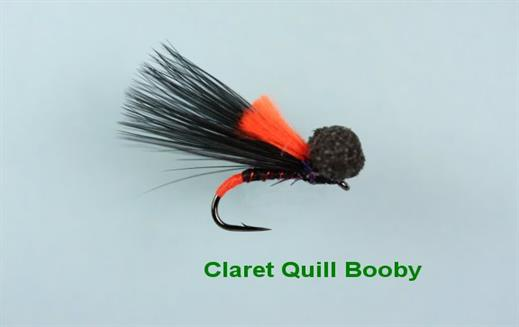 Claret Quill Booby